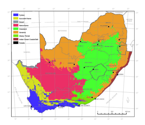Vegetation Of South Africa Plantzafrica