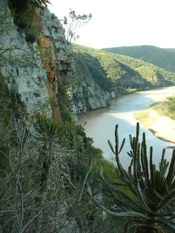 The Kei River cliffs, habitat of Drimia loedolffiae.