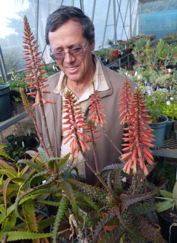 Mr Dan Roux with a plant of Aloe varimaculata in flower at Kirstenbosch National Botanical Garden succulent collection, collected on the Angola expedition in January 2009.