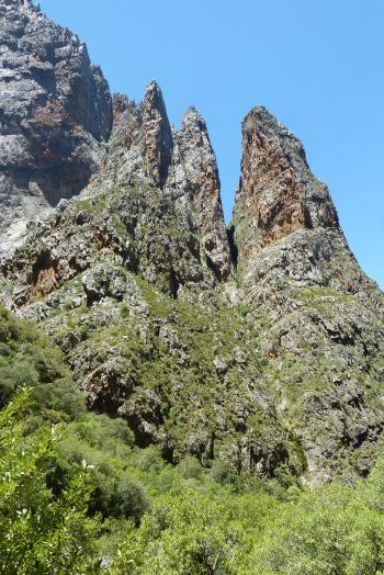 Sheer cliffs in Dome Kloof, habitat of Roosia lucilleae.
