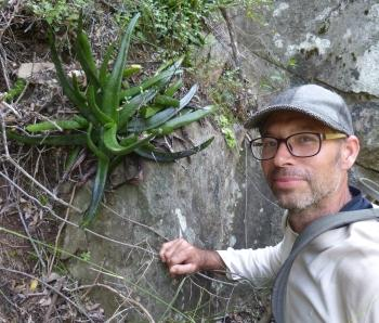 Gasteria koenii in its native habitat on a cliff together with its discoverer, Kevin Koen.