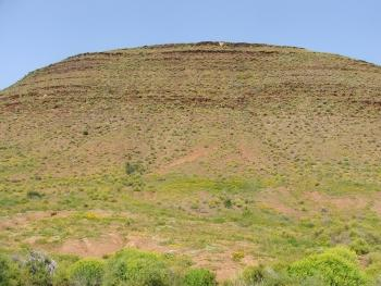 The habitat of Aloe kamnelii, a koppie in the Tanqua Karoo.
