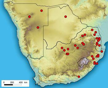 Distribution of Ceropegia crassifolia var. crassifolia based on records at the National Herbarium (PRE) in Pretoria.