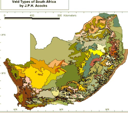 Veld In South Africa Map.More About The Classification Of Vegetation In South Africa